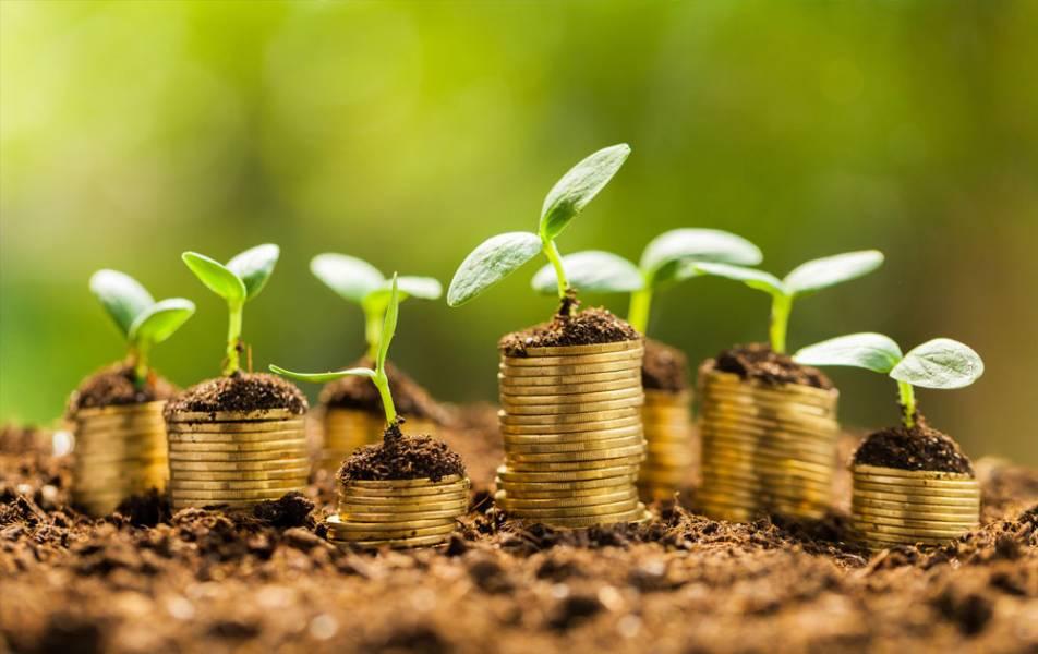 Мінагрополітики підтримує введення податку на землю на кожен гектар