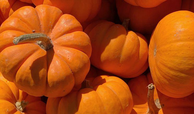 Гарбузи рекордно подешевшали: ціни на овочі та фрукти