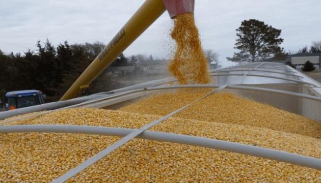 Україна намолотила перший мільйон тонн кукурудзи