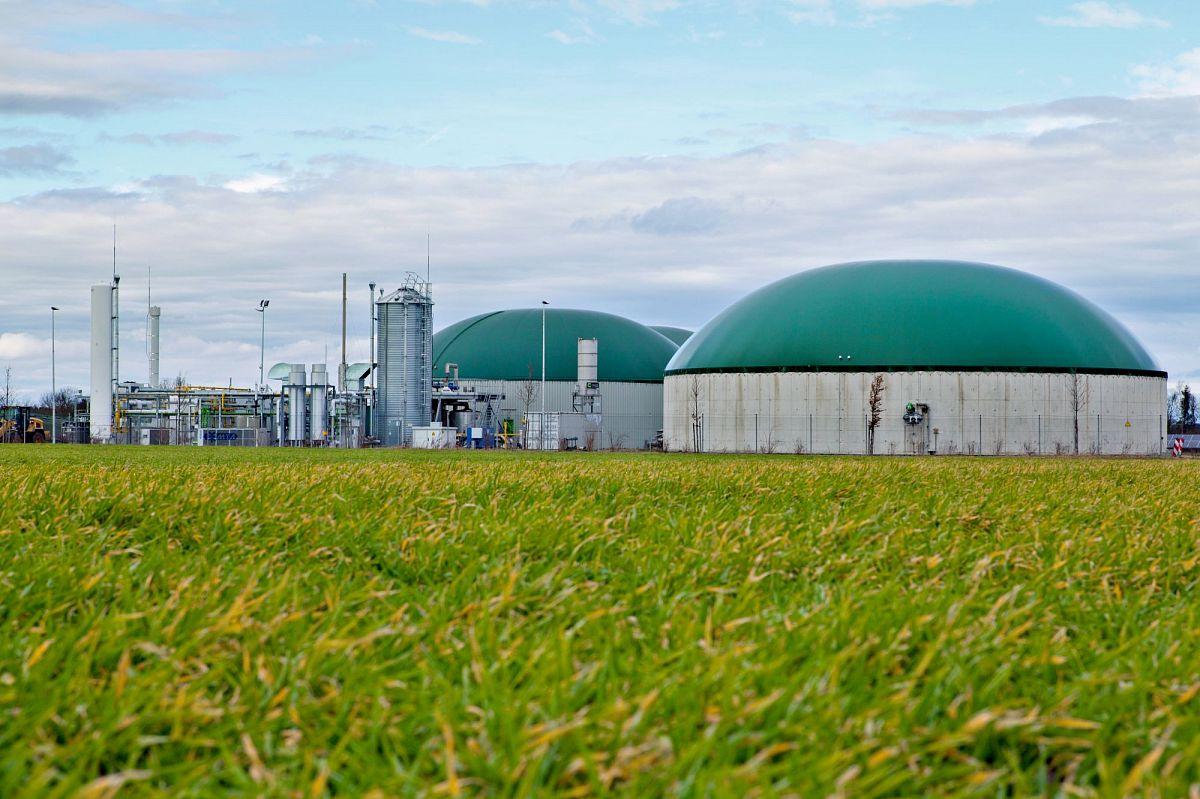 """Біогаз і біометан мають замістити імпорт природного газу – президент """"МХП Еко Енерджи"""""""