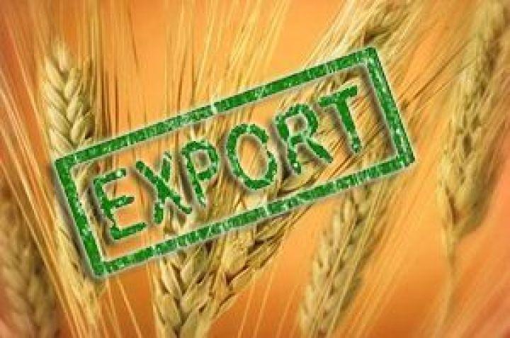 Експорт українського зерна перевищив 12 млн тонн
