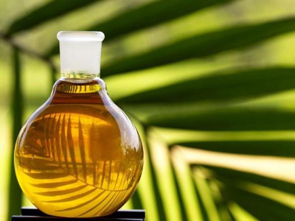 Депутати підтримали закон щодо заборони пальмової олії у дитячому харчуванні