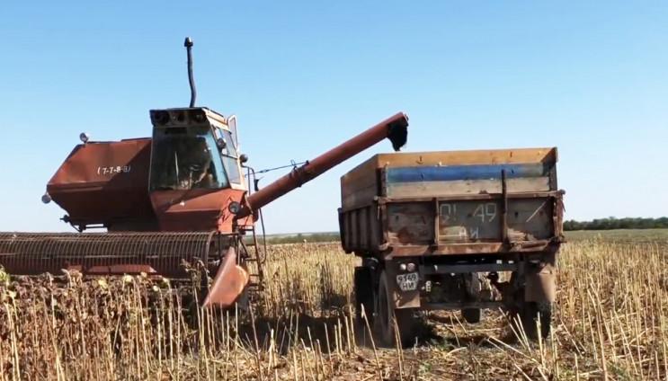 Фермер звинувачує співробітника Держгеокадастру в захопленні врожаю