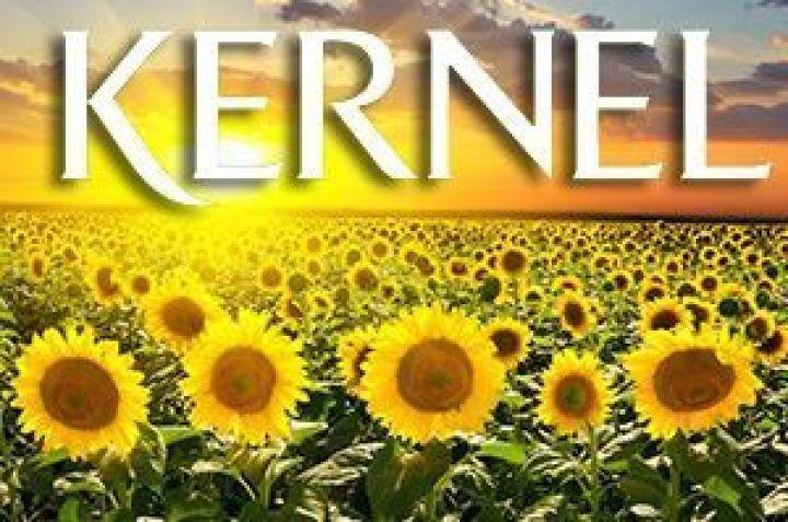 Найбільший виробник соняшникової олії в Україні відзвітував про зростання прибутку в 4 рази