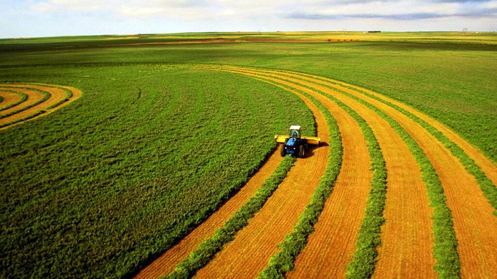Як Косюк хакнув земельну реформу та мотивував працівників свого агрохолдингу викупати паї